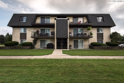 11135 S 84th Avenue UNIT 3A, Palos Hills, IL 60465 - MLS#: 10488891