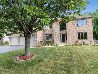 13161 Meadow Lane, Plainfield, IL 60585 - #: 10489632