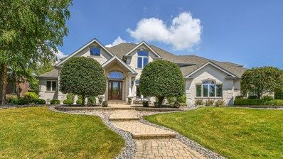 11871 Coquille Drive, Frankfort, IL 60423 - #: 10490442