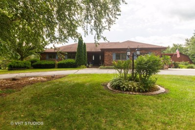 24360 S Harvest Hills Road, Frankfort, IL 60423 - #: 10491131