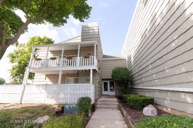 1460 Stonebridge Trail UNIT 1-1, Wheaton, IL 60189 - #: 10491257