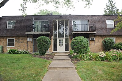 645 Grove Drive UNIT 102, Buffalo Grove, IL 60089 - #: 10491617