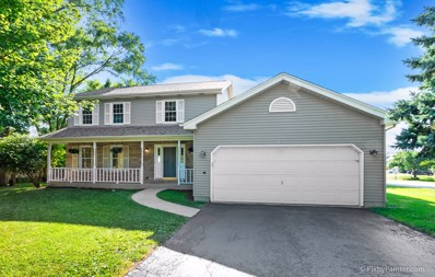 23 Crystal Lake Road, Lake In The Hills, IL 60156 - #: 10491937