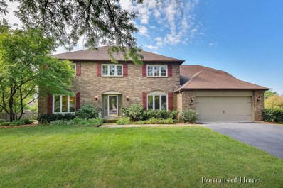 927 Chattanooga Court, Naperville, IL 60540 - #: 10493194