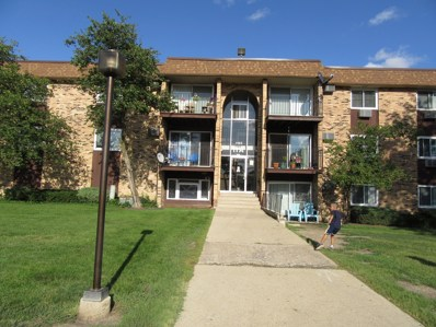 1165 Higgins Quarters Drive UNIT 116, Hoffman Estates, IL 60169 - #: 10493753
