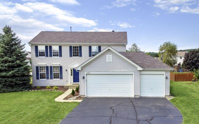 201 Donegal Court, Mchenry, IL 60050 - #: 10493807