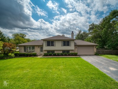 860 S Chatham Avenue, Addison, IL 60101 - #: 10494407