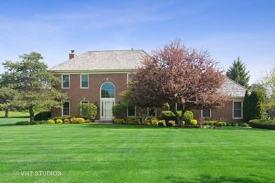 193 Boxwood Drive, Hawthorn Woods, IL 60047 - #: 10494910