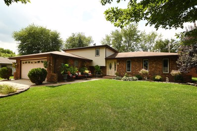 19728 Greenview Avenue, Mokena, IL 60448 - #: 10495175