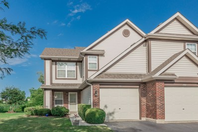 1770 Nature Court, Schaumburg, IL 60193 - #: 10495340