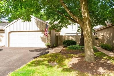 294 Hickory Lane, Lake Barrington, IL 60010 - #: 10497446
