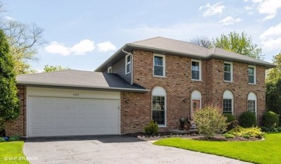 2022 Exmoor Court, Naperville, IL 60565 - #: 10497998