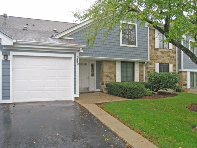 349 Sandalwood Lane UNIT B1, Schaumburg, IL 60193 - #: 10498421