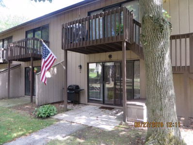 17 St Thomas Colony UNIT 4, Fox Lake, IL 60020 - #: 10498448