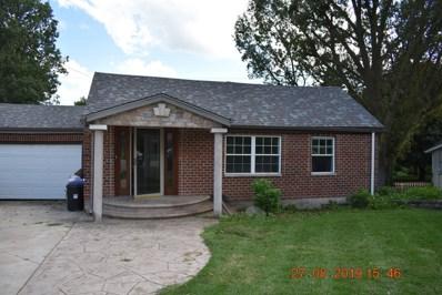 207 E Bluff Street, Winnebago, IL 61088 - #: 10499475