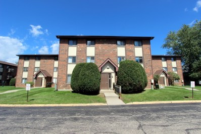 423 Berkshire Drive UNIT 33, Crystal Lake, IL 60014 - #: 10499578