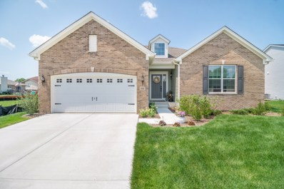807 Back Bay Court, Minooka, IL 60447 - #: 10499659