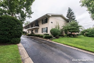 595 Duane Street UNIT 2A, Glen Ellyn, IL 60137 - #: 10499856