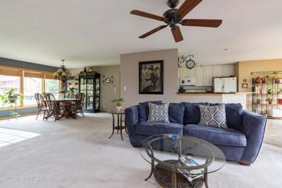 300 Blue Spruce Court, Lake Villa, IL 60046 - #: 10499942