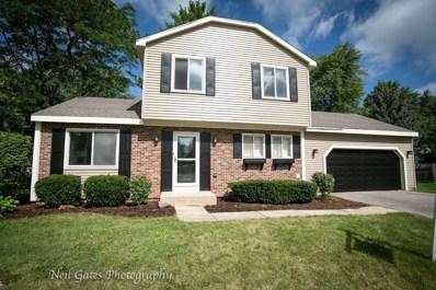 1329 Duquesne Avenue, Naperville, IL 60565 - #: 10500541