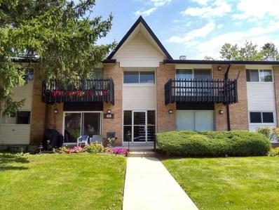8B  Kingery Quarter UNIT 205, Willowbrook, IL 60527 - #: 10501248