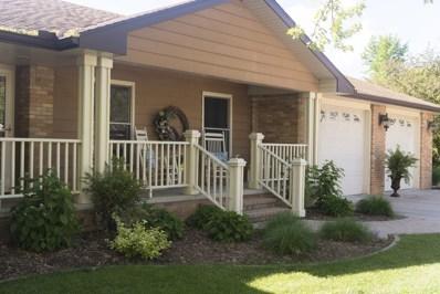 295 E First Avenue, Clifton, IL 60927 - #: 10502528