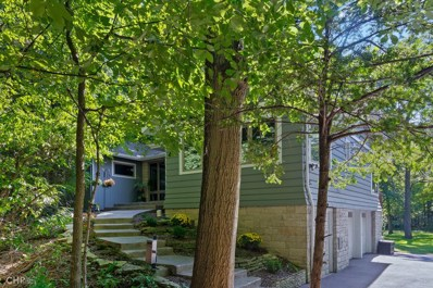 5230 Lee Avenue, Downers Grove, IL 60515 - #: 10503518