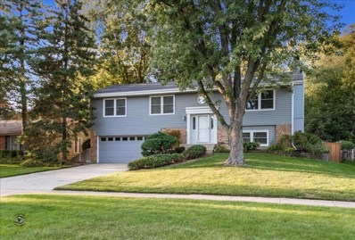 21W562  Buckingham, Glen Ellyn, IL 60137 - #: 10504743