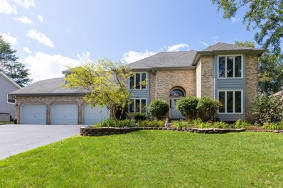 6S222  New Castle, Naperville, IL 60540 - #: 10505092