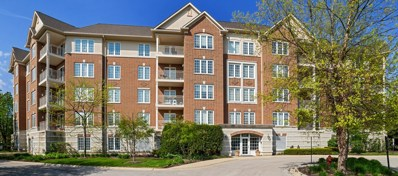 640 Robert York Avenue UNIT 203, Deerfield, IL 60015 - #: 10506557