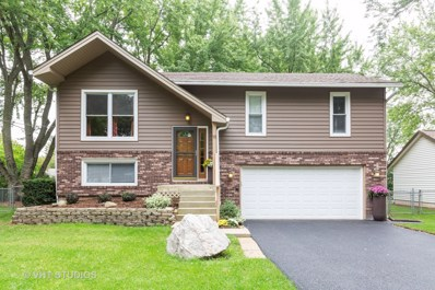 19 Walnut Lane, Algonquin, IL 60102 - #: 10507125