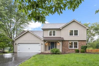 1325 Goldenrod Drive, Naperville, IL 60540 - #: 10507867