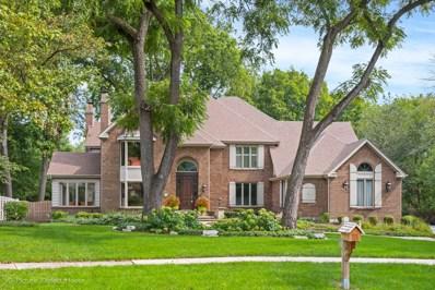 1136 Kinsie Court, Naperville, IL 60540 - #: 10508421