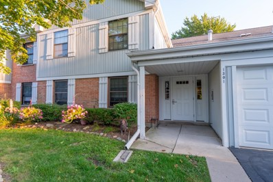 1301 Williamsburg Drive UNIT D1, Schaumburg, IL 60193 - #: 10509462