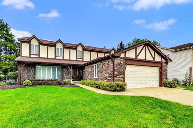 1047 N Carlyle Lane, Arlington Heights, IL 60004 - #: 10509631