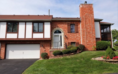 17825 Cameron Parkway, Orland Park, IL 60467 - #: 10510918