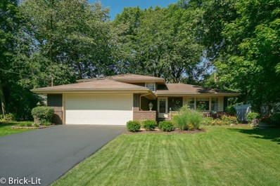 153 Kimber Drive, New Lenox, IL 60451 - #: 10511258