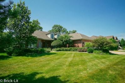 22698 Nature Creek Circle, Frankfort, IL 60423 - #: 10511347