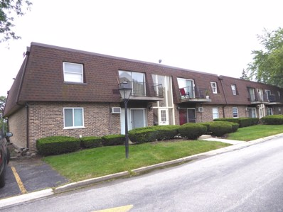 695 Grove Drive UNIT 207, Buffalo Grove, IL 60089 - #: 10511771