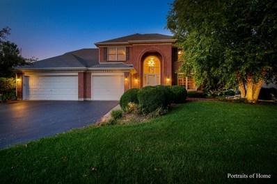 13654 Golden Meadow Drive, Plainfield, IL 60544 - #: 10512352