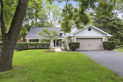 905 Oakwood Terrace, Hinsdale, IL 60521 - #: 10513293