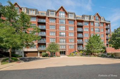 255 E Liberty Drive UNIT 407, Wheaton, IL 60187 - #: 10514165