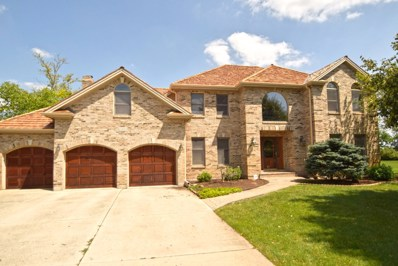 10803 Royal Porthcawl Drive, Naperville, IL 60564 - #: 10514223