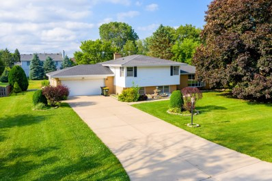 106 Eleanor Drive, Prospect Heights, IL 60070 - #: 10516790