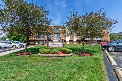 10640 Brooks Lane UNIT B3, Chicago Ridge, IL 60415 - #: 10518648