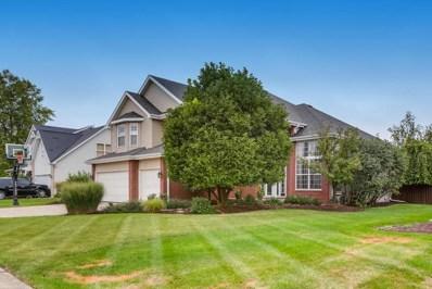 25053 Michele Drive, Plainfield, IL 60544 - #: 10518969