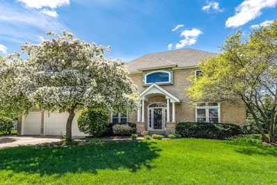 1431 Frenchmans Bend Drive, Naperville, IL 60564 - #: 10518980