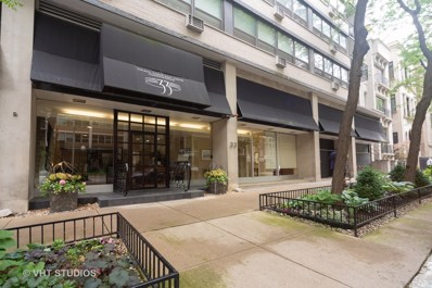 33 E Cedar Street UNIT 19C, Chicago, IL 60611 - #: 10519168