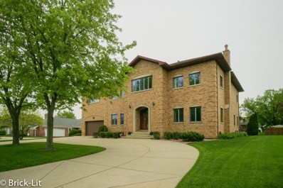 6527 Deer Lane, Palos Heights, IL 60463 - #: 10519224