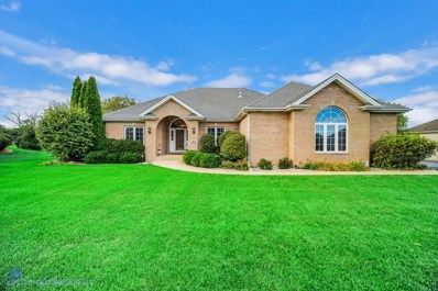 311 Fairway Drive, Beecher, IL 60401 - #: 10519499